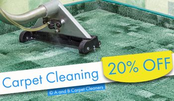 A and B Carpet Cleaners - Carpet andor Rug Cleaning Special