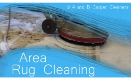 Area and Oriental Rug Cleaning - Dumbo 11201