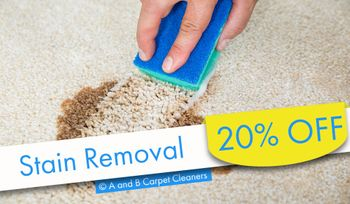 A and B Carpet Cleaners - Stain Removal Special