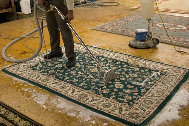 Area and Oriental Rug Cleaning - Broadway Junction 11233