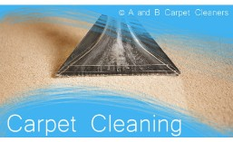 Carpet Cleaning - Dumbo 11201