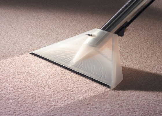 Carpet Cleaning - Broadway Junction 11233